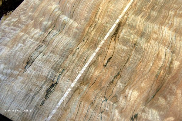 Spalted maple rick toone luthier