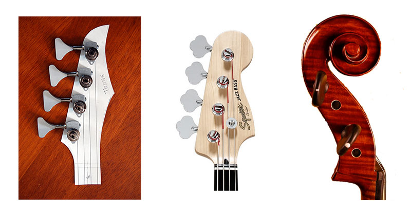Orchid Bass Headstock
